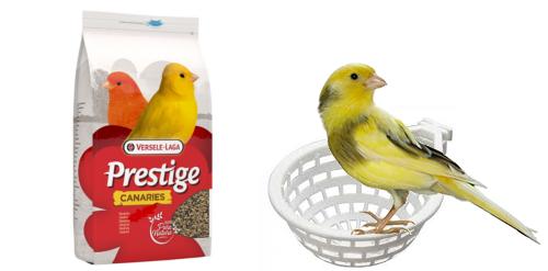 Image de Nourriture et accessoires pour canaris