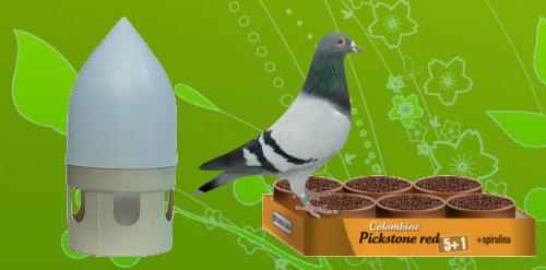 Nourriture et accessoires pour pigeons