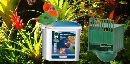 Image de Nourriture et accessoires pour oiseaux exotiques