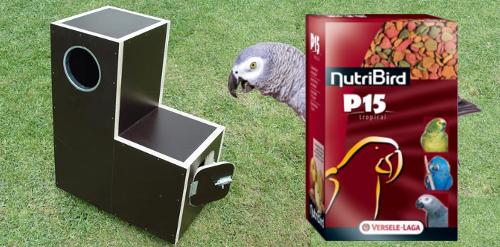 Nourriture et accessoires pour perroquets
