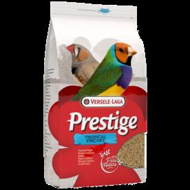 Prestige Oiseaux exotiques élevage