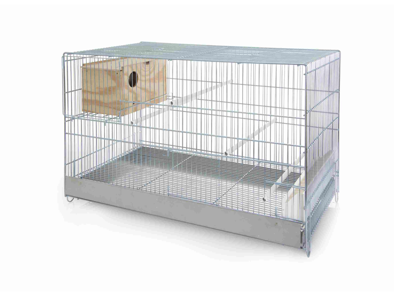 Cage élevage avec nid
